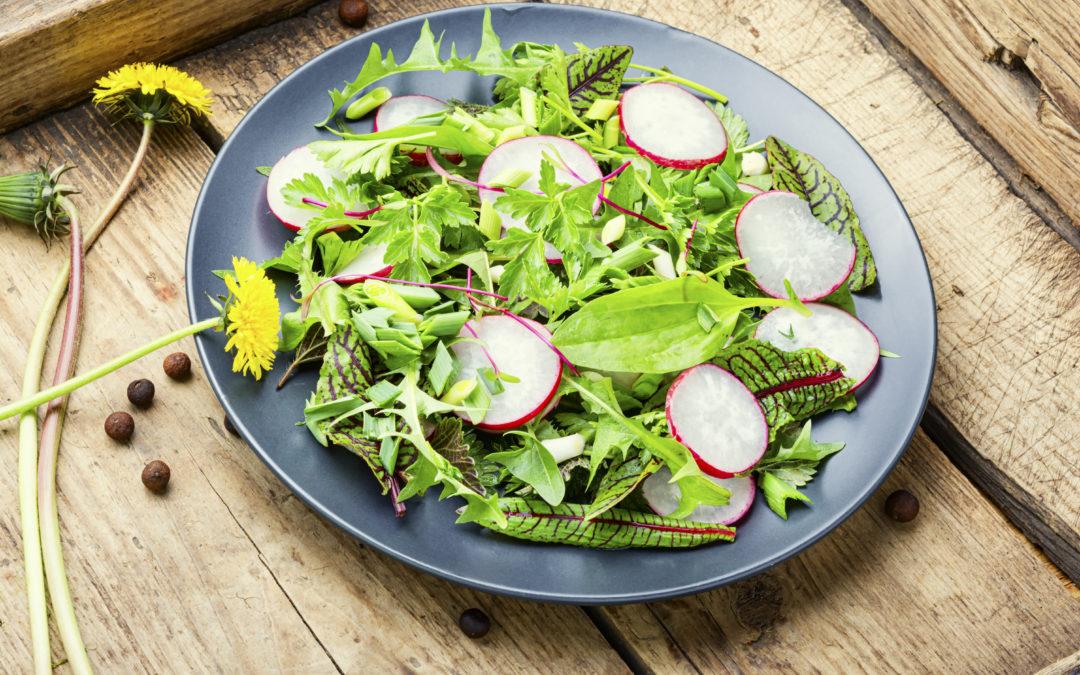 Salat mit Kräutern